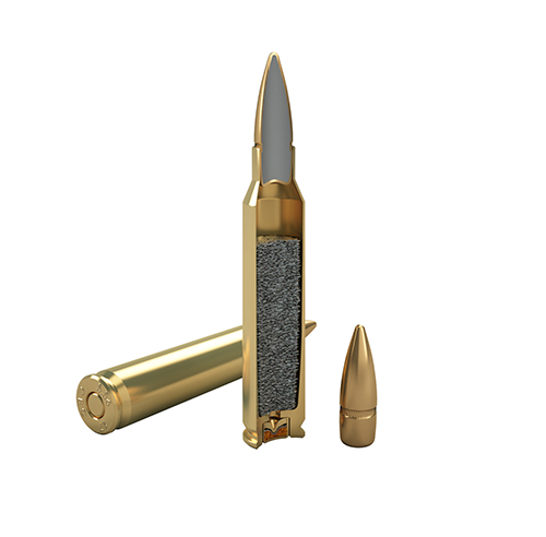 5.56x45mm Ball M193
